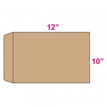 Brown Envelope - Giant - 10-inch x 12-inch